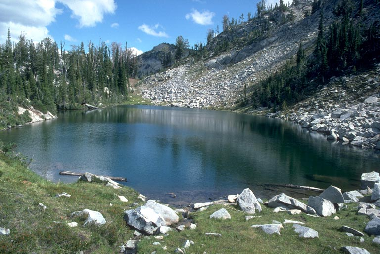 Freshwater lakes and ponds for Freshwater pond fish
